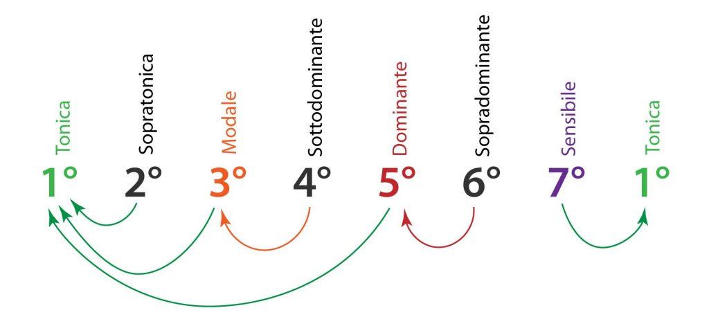 tonalità tendenza delle note della scala maggiore